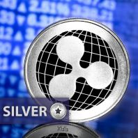"Your ""Silver"" Ripple package – an educational package with gift"